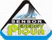 energypiqua.png
